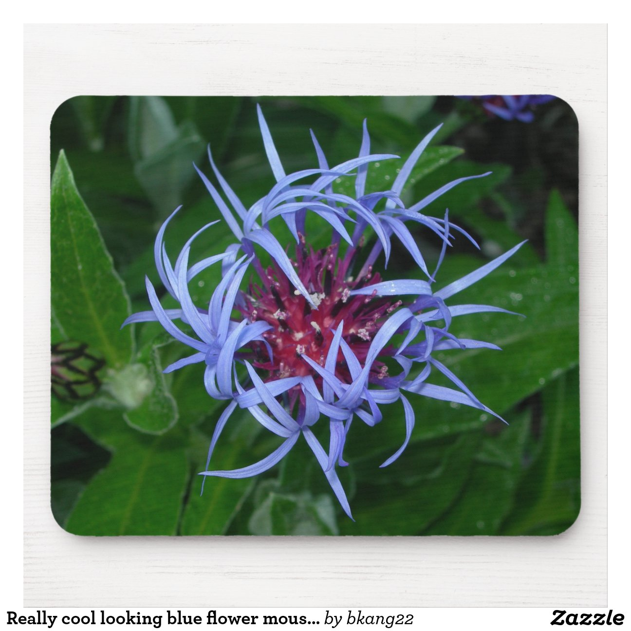 Cool Looking Plants Really Cool Looking Blue Flower Mousepad