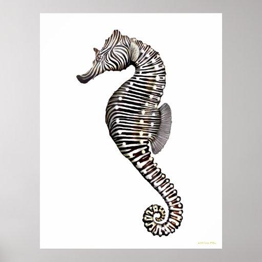 Iphone Wallpaper Psd Template Zebra Seahorse Drawing