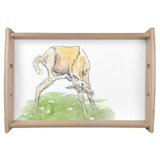 Whimsical Spring Horse Foal Serving Trays