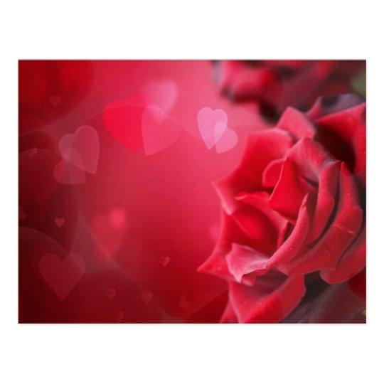 Postal rosas y corazones Zazzlees