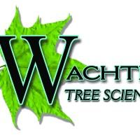 Guest Post: Wachtel Tree Science & Urban Forestry Grants