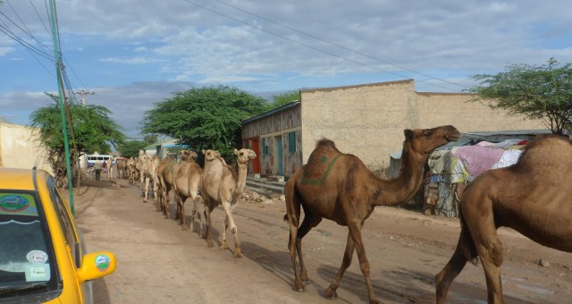 15 Things to Know Before You Go to Hargeisa