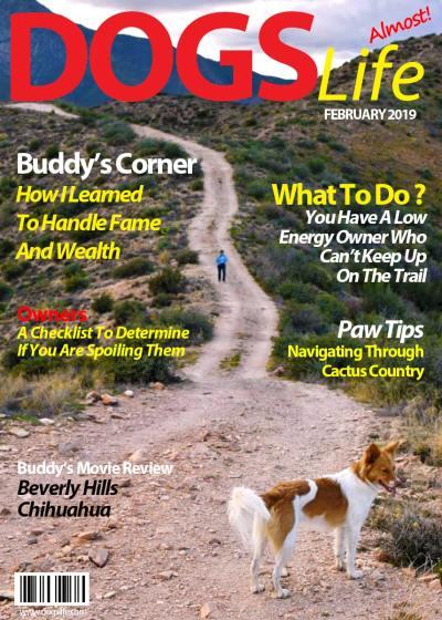 Dog's Life - Buddy's Got It Covered!   Roads Less Traveled