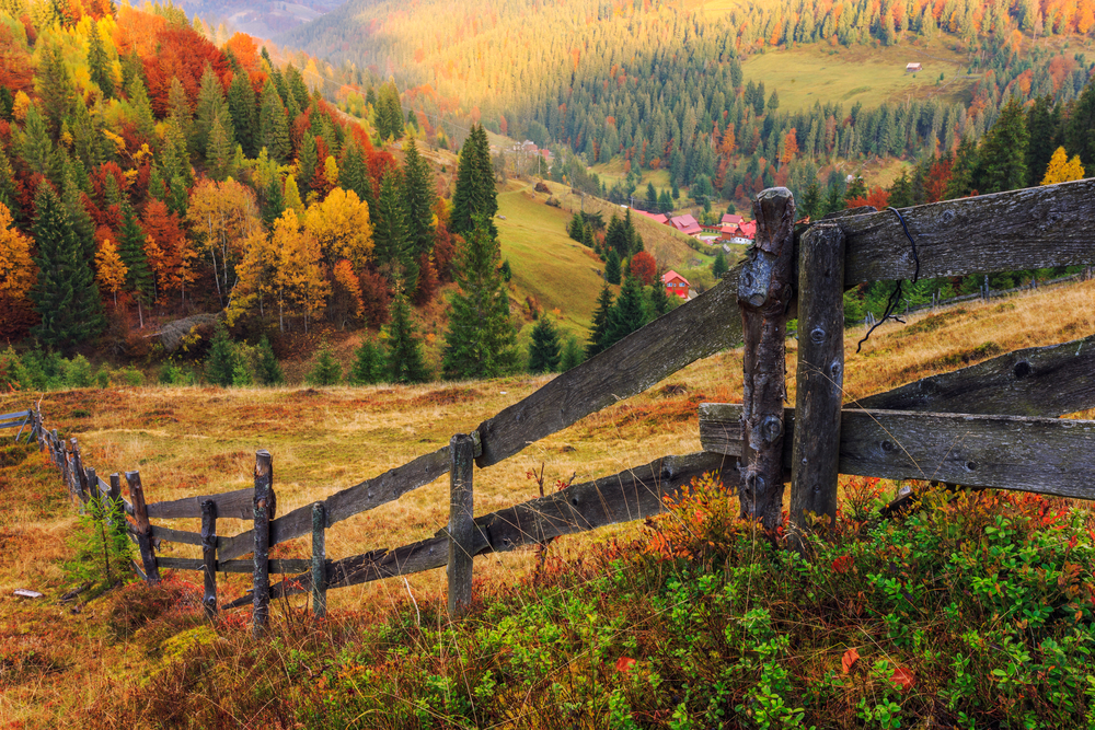Cute Rustic Fall Wallpapers The Best Places To Travel To See Fall Foliage