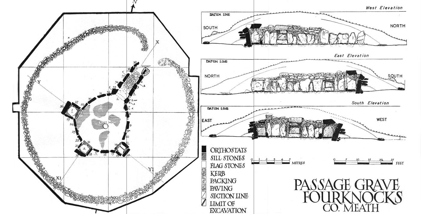 pimple diagram area