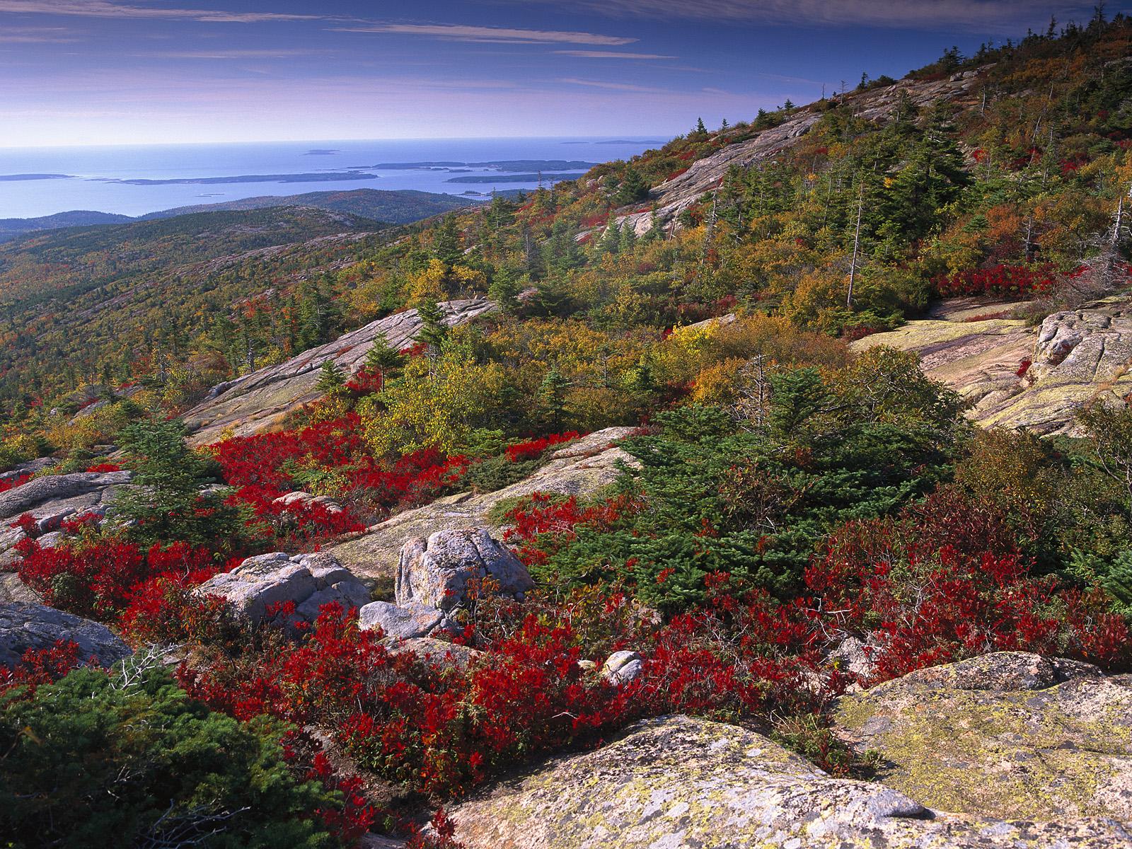 Fall Mountain Wallpaper Free Cadillac Mountain Acadia National Park Maine Behind