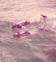 B&B snorkeling