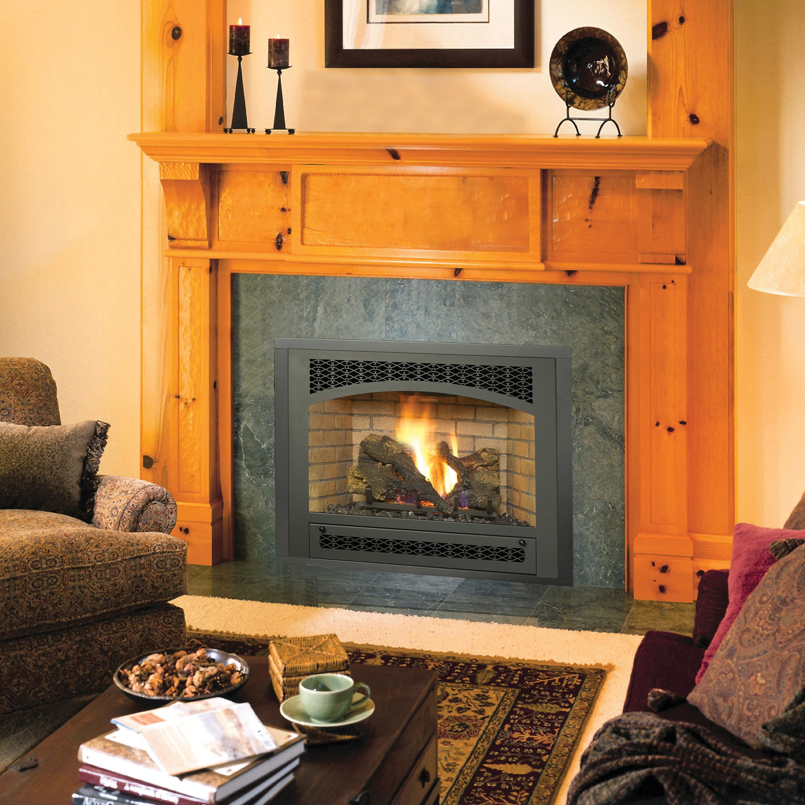 Avalon Gas Fireplace Inserts Fireplace Inserts Fireplace Inserts Seattle