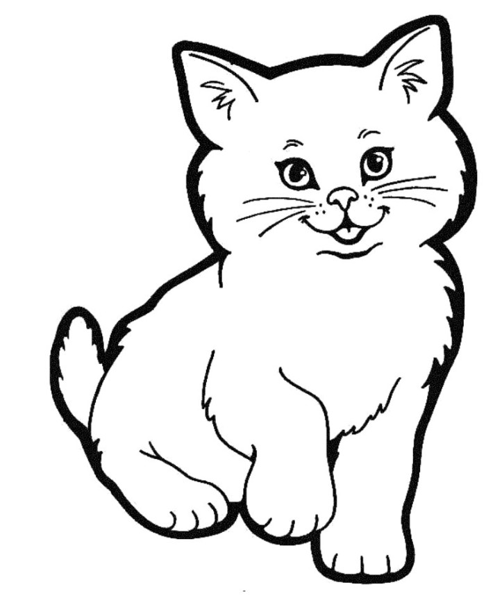 How to draw a cute realistic cat cartoon face step by step ...
