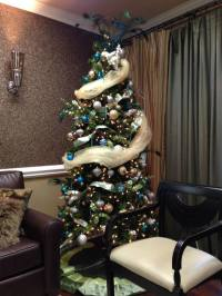 Christmas Decorations At Our Rock Hill Dental Office ...