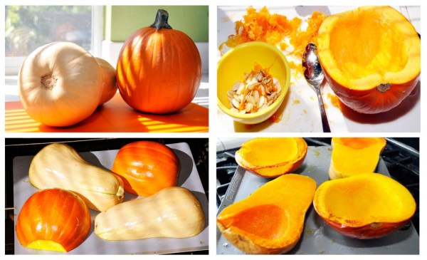 Roasting Squash and Pumpkins