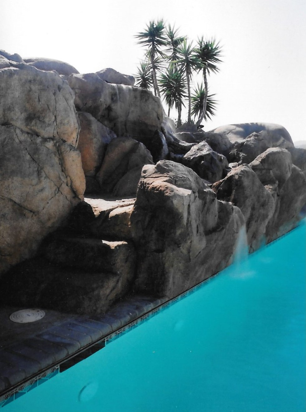 swimming pools fish ponds (17)