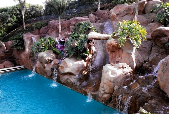 swimming pools fish ponds (8)