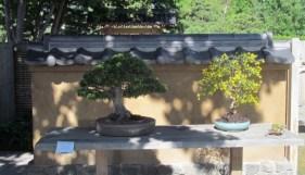On disaplay at Denver Botanic Gardens