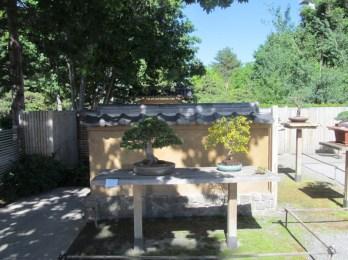 Bonsai Pavillion