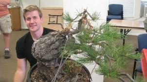 Bjorn Bjornhom - Ponderosa Pine Bonsai 07-15-2017