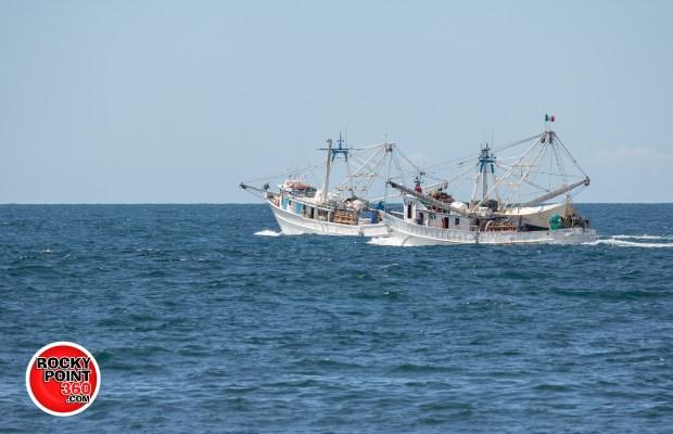 barcos2