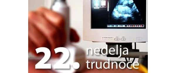 22 nedelja trudnoće