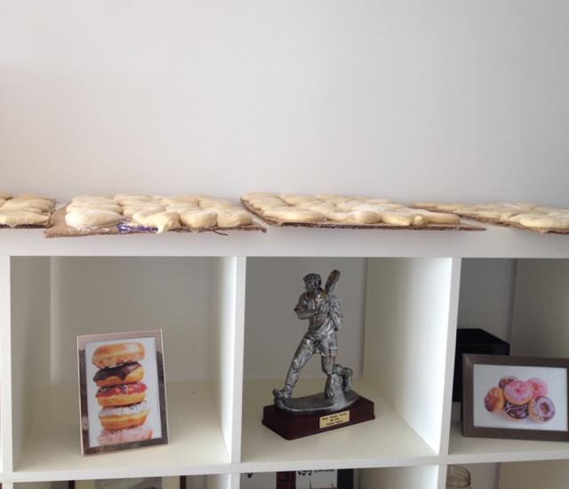 homemade-gourmet-doughnuts-proofing