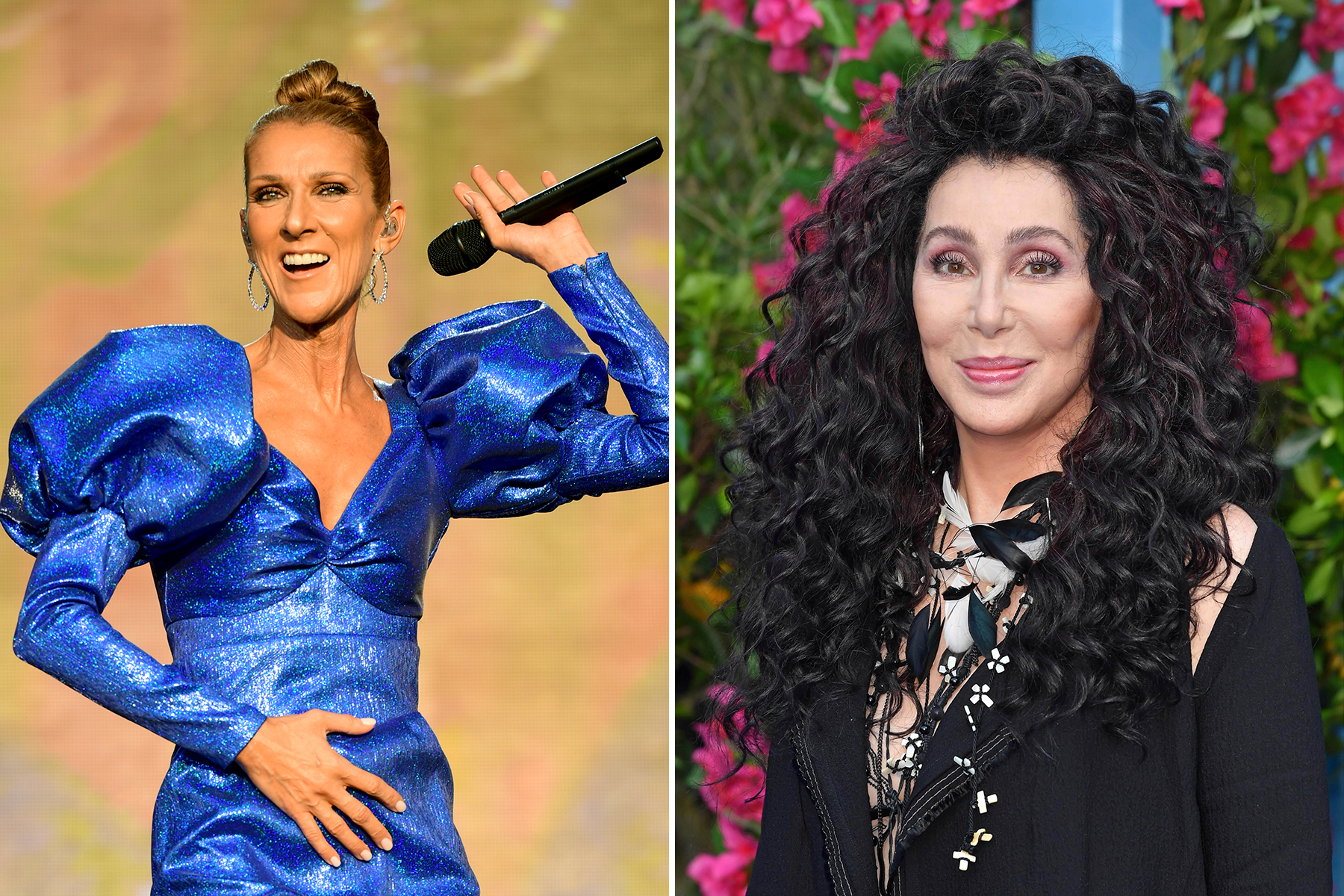 Celine Dion Cher More Join Un S International Women S Day Event Rolling Stone