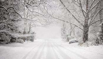 Snowy road in snow storm.