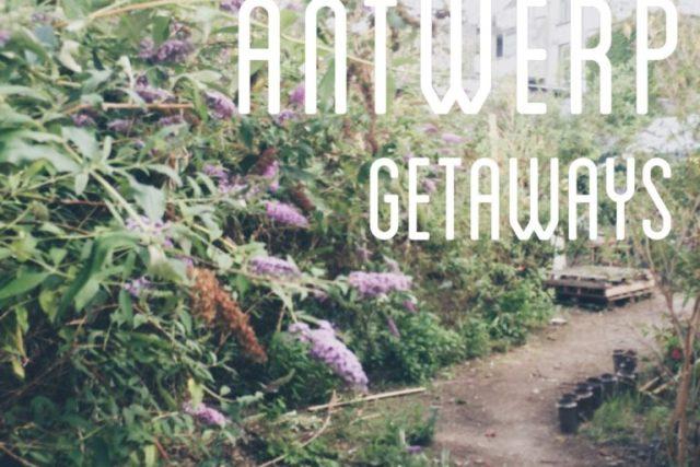 green_antwerp_getaways_bar_attak_paniek_zwemvijver_boekenbergpark