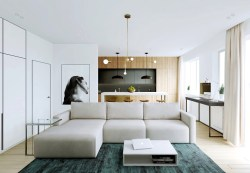 Small Of Modern Apartment Pictures