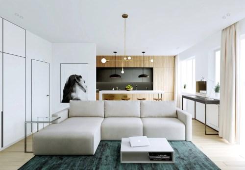 Medium Of Modern Apartment Pictures