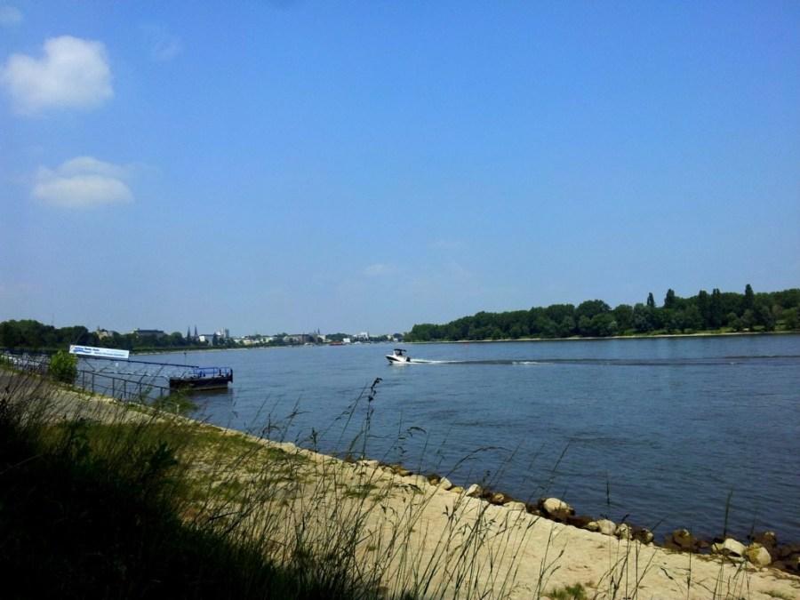 Rhein Bonn