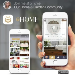 bHome – the App that saves your life!