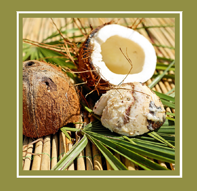hair-butter-using-coconut