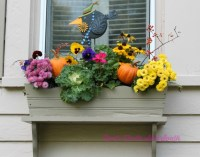 Creating a Fall Window Box Your Neighbors will Envy ...