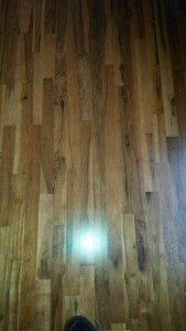 new maple hardwood flooring