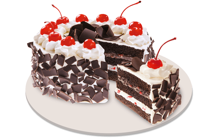 Black Forest Cake Red Ribbon Rosette Fresh