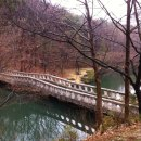 An unforgettable sojourn in Korea