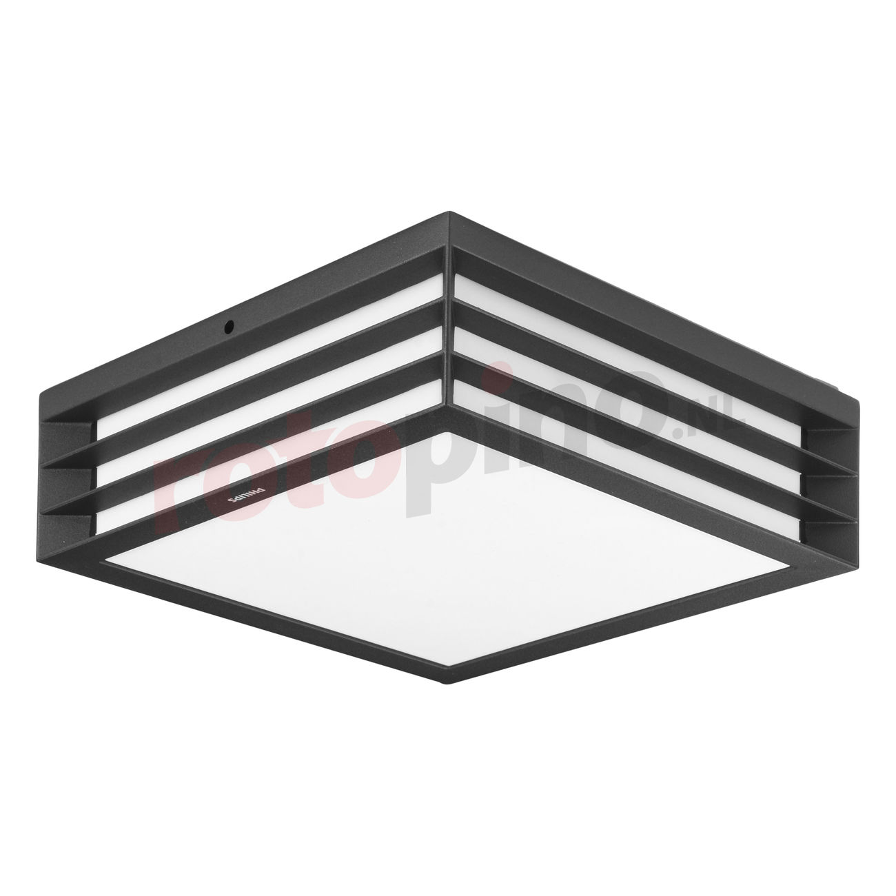 Philips Buitenlamp Buitenlamp Plafond Moonshine Philips 1735093pn