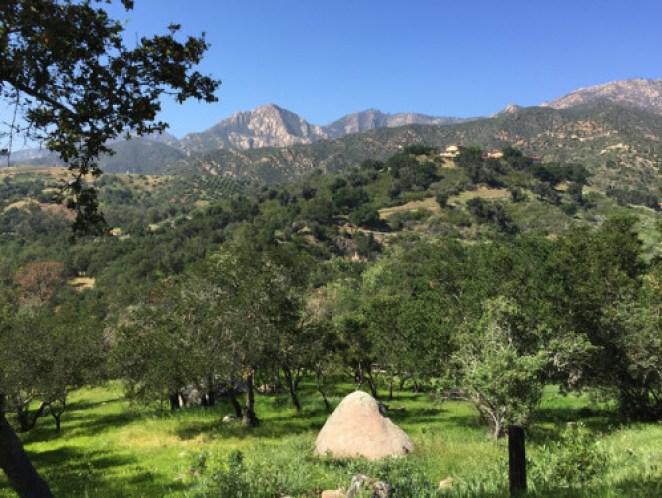 Trek Travel bike vacation wine country hills.Schnittker.36
