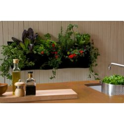 Small Crop Of Indoor Wall Garden Ideas