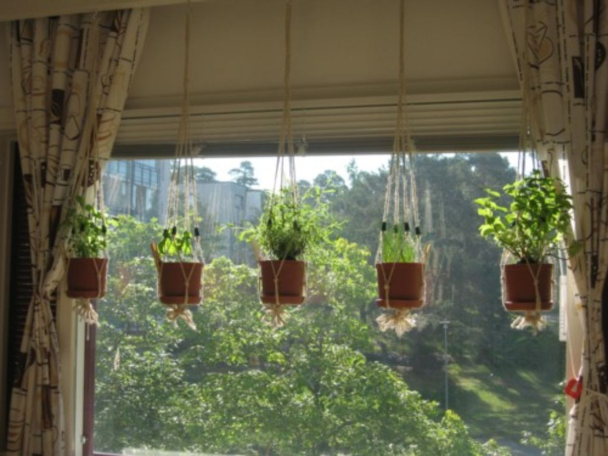 Hanging Indoor Herb Garden 21 Incredible Indoor Hanging Herb Garden Round Decor