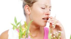 Sweeping Away Allergies