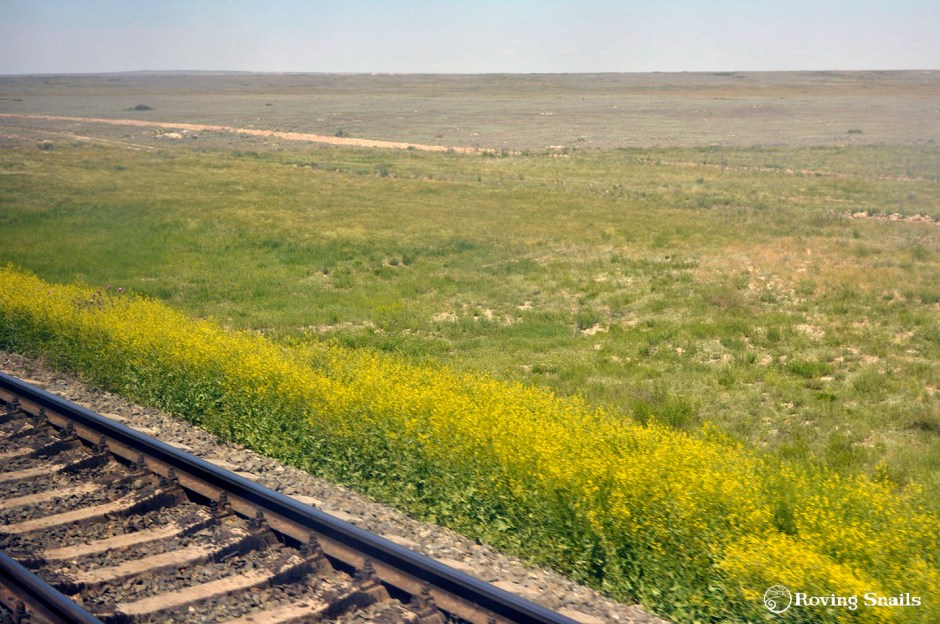 train across the steppe