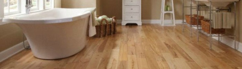 Royal Wood Floors Helps You Understand More About Beech