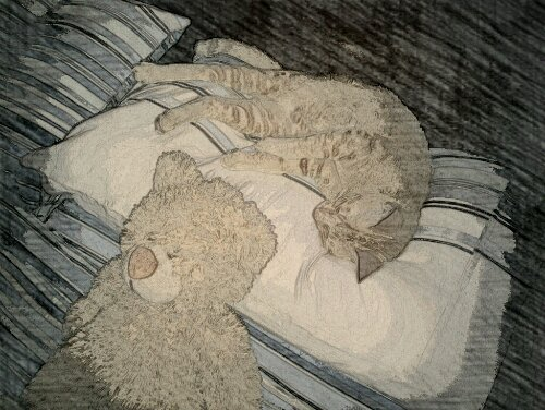 wpid PaperCamera2012 10 29 10 26 27 Charlie and Teddy