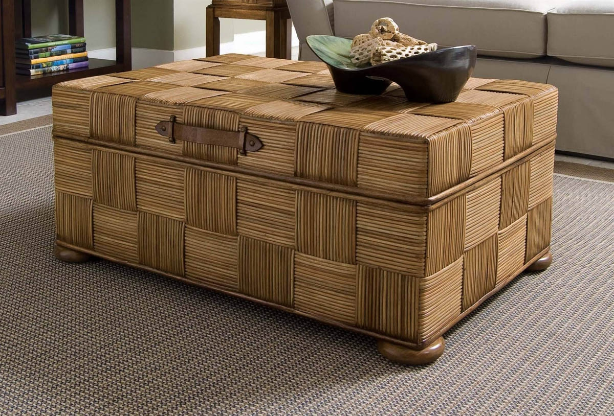 Living Room Storage Chest Traditional Storage Chest Coffee Table Living Room With