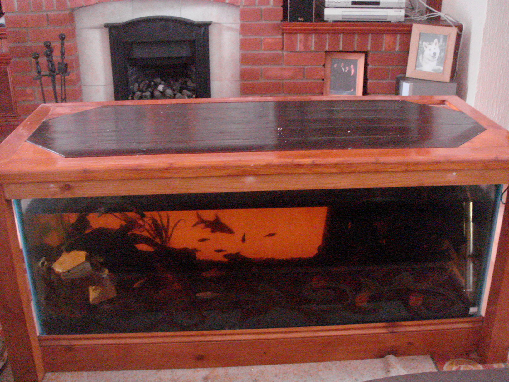 Unique Coffee Tables For Sale Coffee Table Aquarium For Sale Roy Home Design