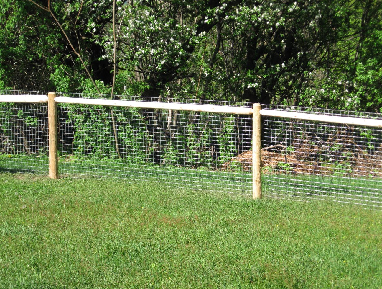 Cheap Fence Ideas For Dogs In Diy Reusable And Portable - Portable Fence