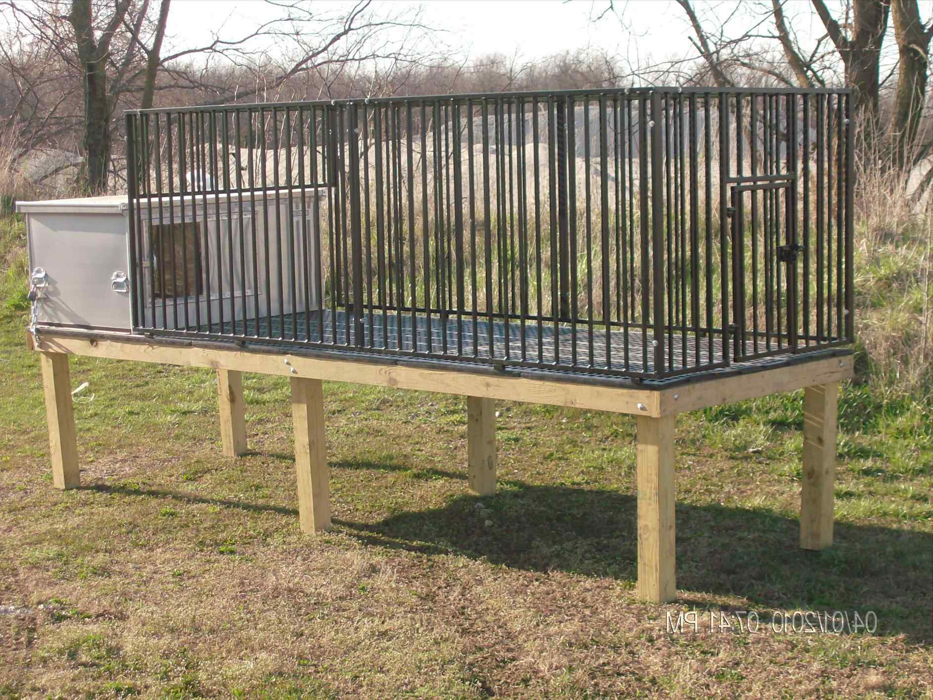 Portable Fencing For Dogs And 5 Main Topics You Must Know - Portable Fence