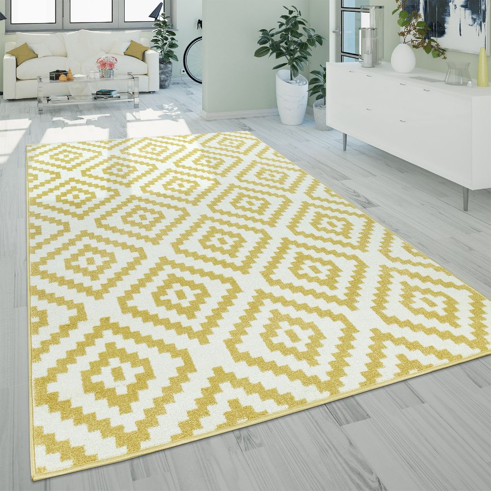Short Pile Rug Ethnic Pattern Rug24