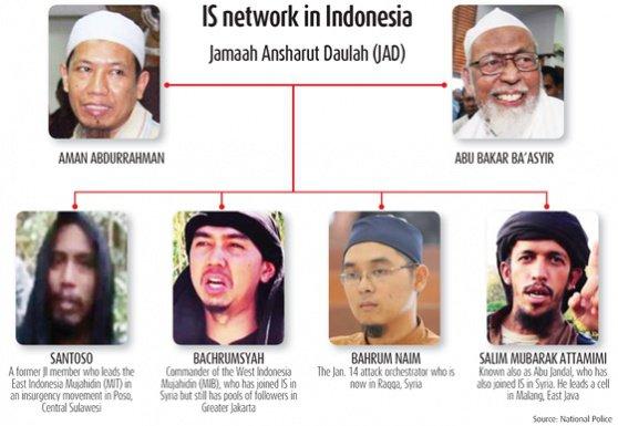 para-jihadis
