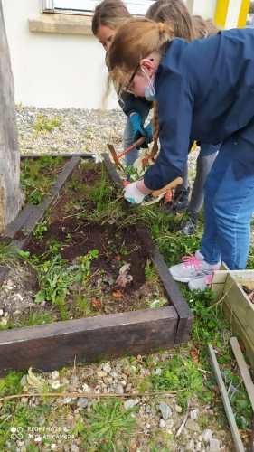 Jardinage des CM1